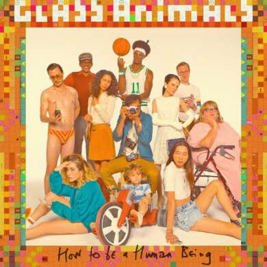 Cover Glass Animals