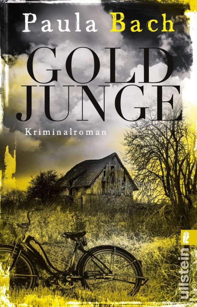 """Buchcover """"Goldjunge"""" von Paula Bach"""