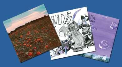 Die Cover aller drei Alben von Hvalfugl