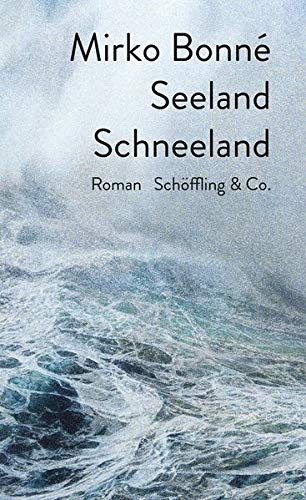 """Buchcover """"Seeland Schneeland"""" von Mirko Bonné"""