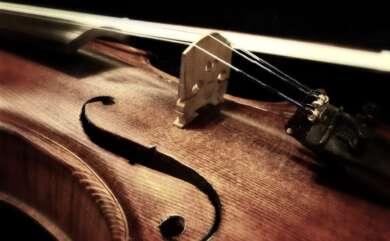 Violine in der Nahaufnahme