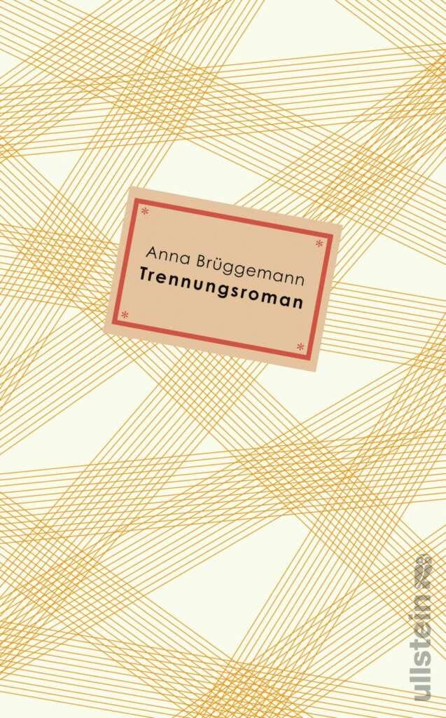 """Buchcover """"Trennungsroman"""" von Anna Brüggemann"""