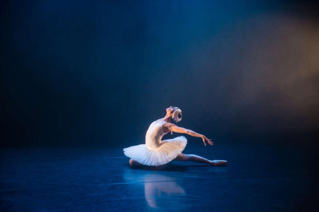 Gauthier Dance Summertime Programme