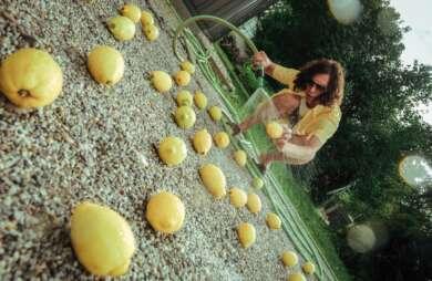 Avakadava Gelbes Hemd Kurze Hose Zitronen Gartenschlauch
