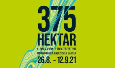 375 Hektar Festival Poster