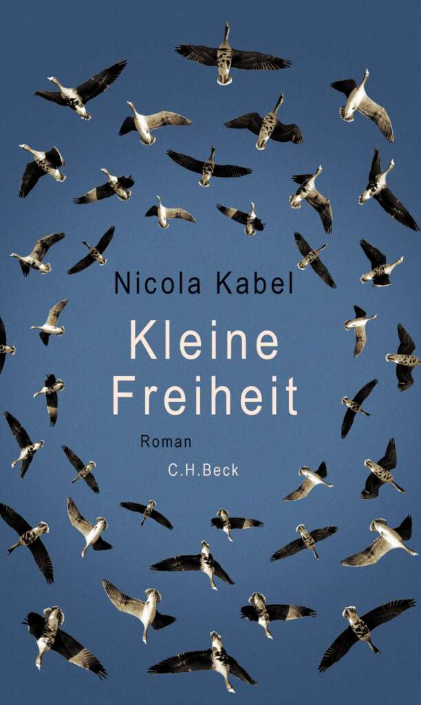 """Cover """"Kleine Freiheit"""" von Nicola Kabel, viel Himmel, viele Vögel in Formation"""