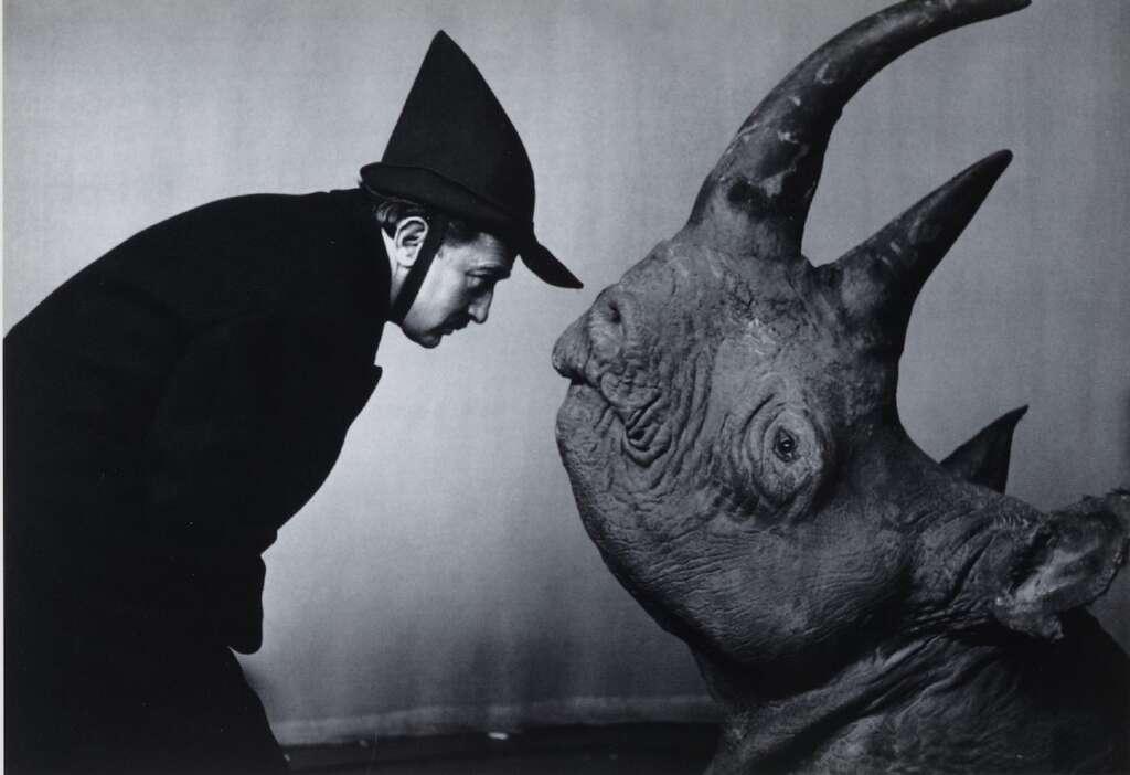 """Max Ernst Museum Brühl: """"Surreale Tierwesen"""""""
